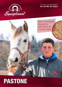 pastone