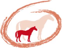 Osteo Foal